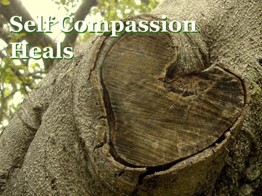 Self-Compassion Heals